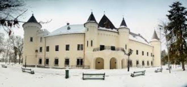 Evenimentele Direcției de Cultură a municipiului Carei în luna februarie