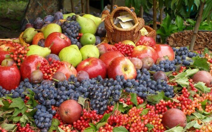 Elevii au donat legume și fructe pentru sătmărenii săraci