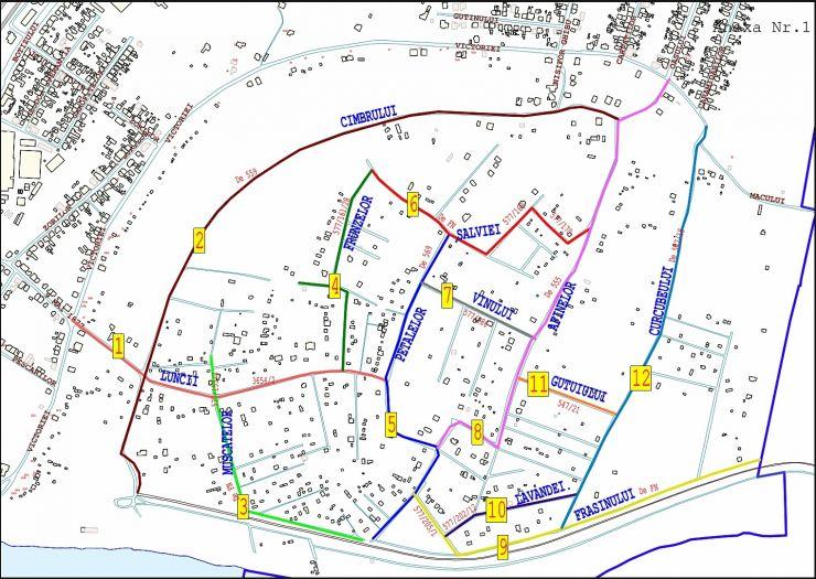 Sistematizare | Primăria face ordine în zona de agrement Bercu