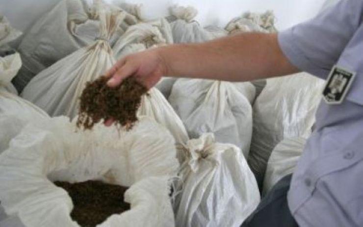 Captură impresionantă: 492,450 kg tutun şi 289.000 bucaţi tuburi pentru ţigarete