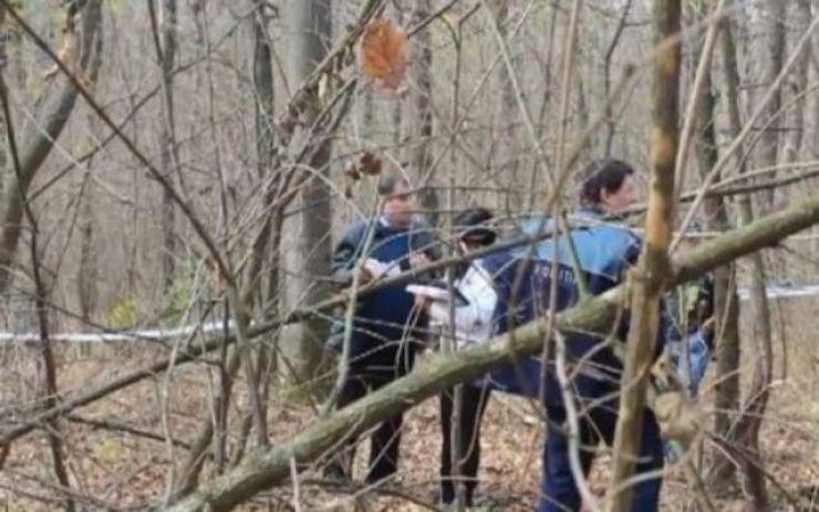 Bărbat accidentat în timp ce tăia arbori dintr-o pădure