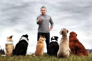 Cesar Millan, cel mai faimos și iubit antrenor de câini din lume, vine în România
