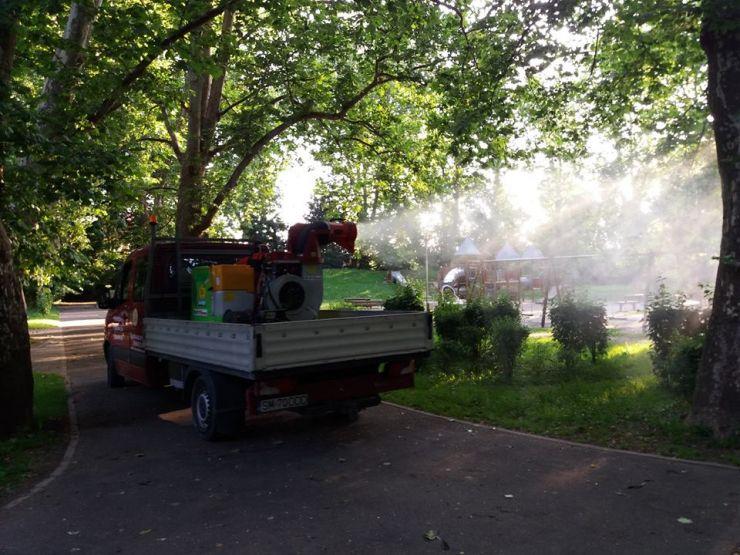 Dezinsecție în Grădina Romei (foto)