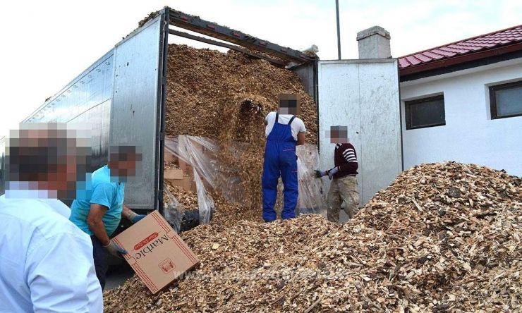 Aproape 250.000 de pachete de ţigări, depistate de câinele poliţiei de frontieră din Halmeu