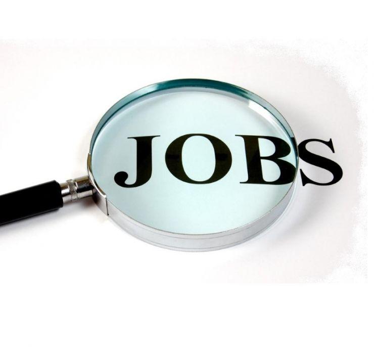 Peste 400 de locuri de muncă vacante în județul Satu Mare