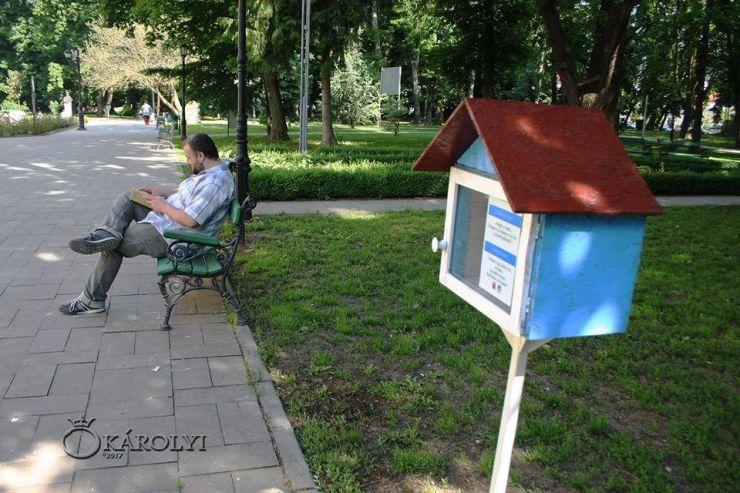 """""""Cuib de cărți"""" în parcul dendrologic din Carei"""