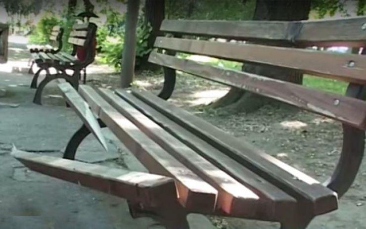Au distrus parcul comunei Pir