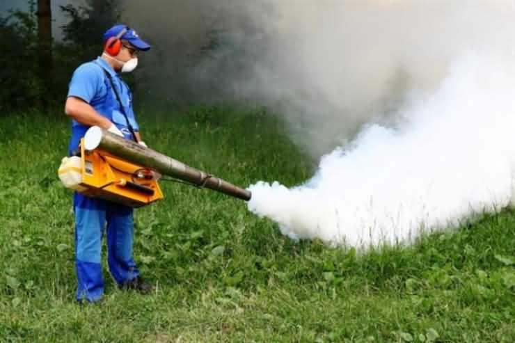 Dezinsecție pentru stârpirea căpuşelor și țânțarilor, în municipiul Satu Mare