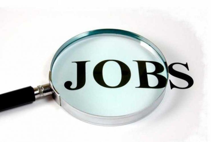 462 locuri de muncă vacante în județul Satu Mare