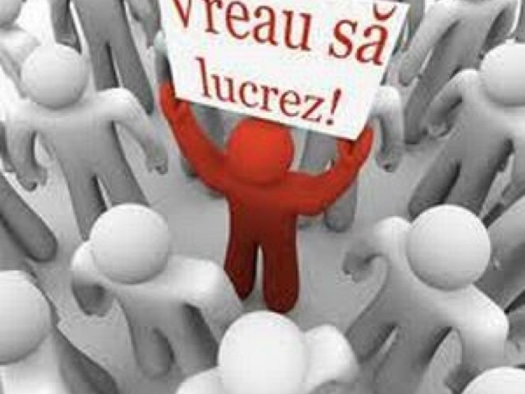 Rata șomajului la nivelul județului Satu Mare