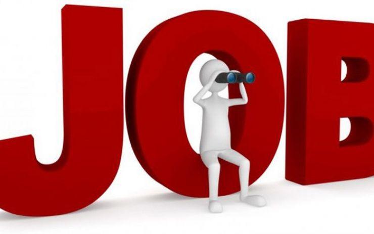 Peste 1.500 locuri de muncă în Spațiul Economic European