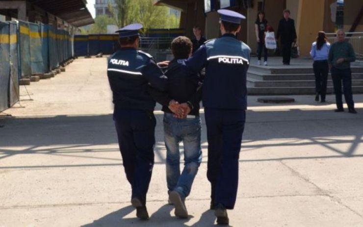 Bănuiți de comiterea unor furturi, cercetați de polițiștii din Satu Mare și Carei