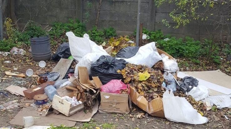 Începe curăţenia de iarnă în municipiu