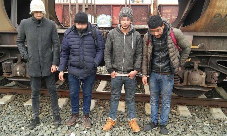 Traficanți de migranți, reținuți la Petea