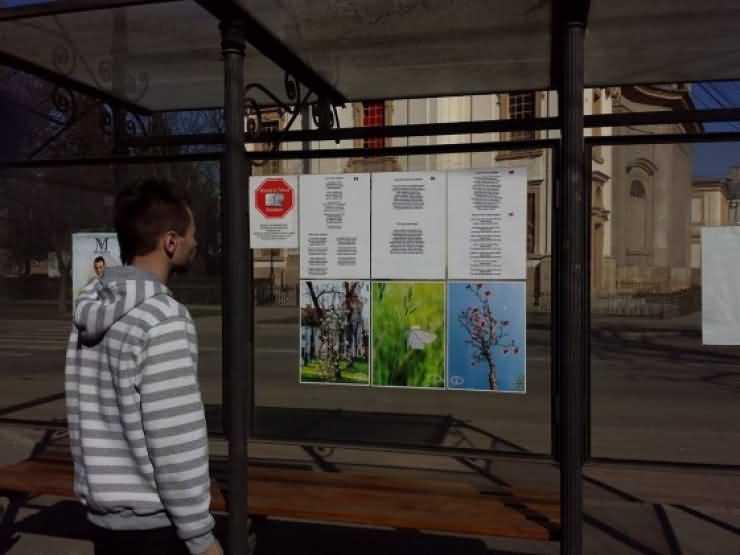 """Proiectul """"Minutul de Cultură"""" continuă la Carei și în luna martie"""