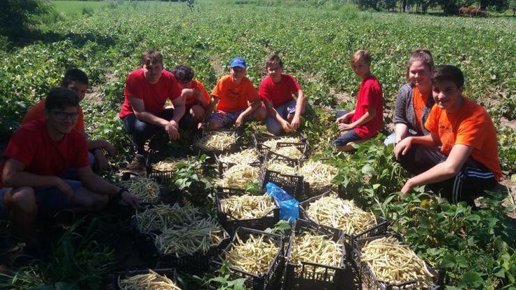 """Fundația """"Hans Lindner"""" organizează tabără de vară, la țară, pentru tineri"""