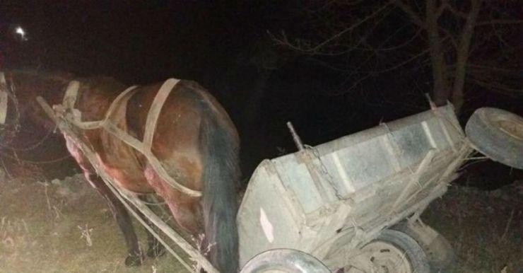 Un bărbat din Tarna Mare s-a răsturnat cu căruța în șanț și a murit