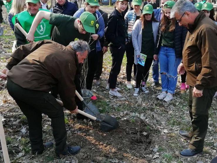Ministrul Apelor şi Pădurilor, Ioan Deneş, a plantat azi puieți de stejar în pădurea Mujdeni