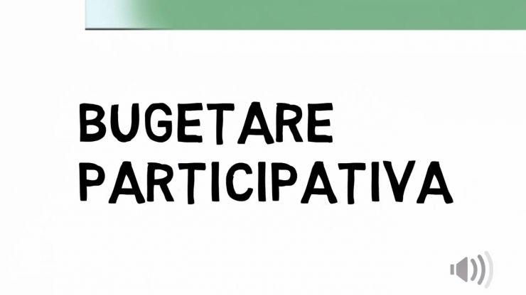 Buget participativ, propunerea USR Satu Mare