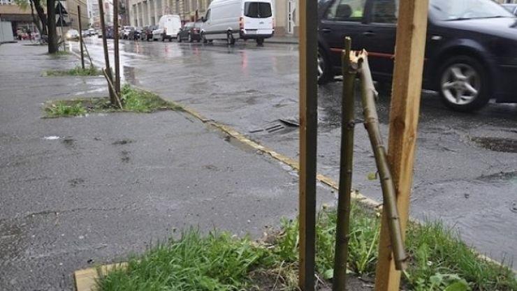 Primaria a recuperat prejudiciul creat de angajatul Florisal