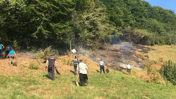Pădure salvată de la incendiere