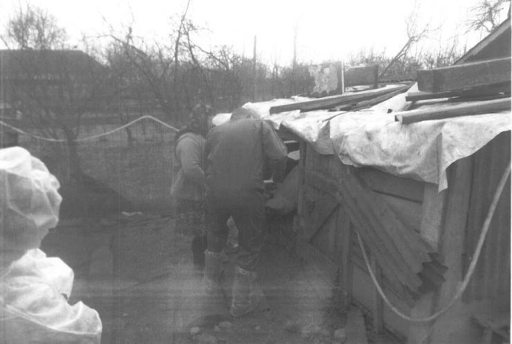 Directorul DSVSA Satu Mare: Focarul de la Gherța Mare, în procedură de stingere