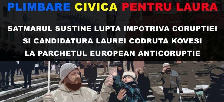 """Miting la Satu Mare: """"Plimbare civică în sprijinul Laurei"""""""