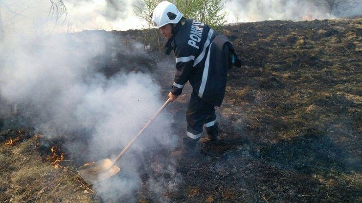 Sute de hectare de vegetație uscată arse în zona Oașului
