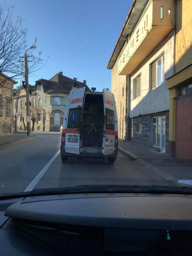 Salariu redus timp de 3 luni pentru vinovatul care a permis transportarea bradului cu ambulanţa în Satu Mare