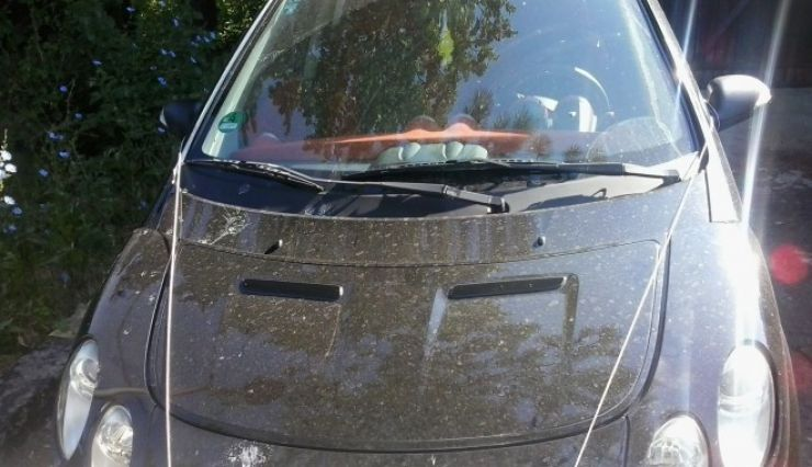 Mașină furată din Italia, oprită în Vama Petea
