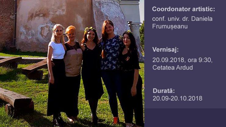 Patru studenți din București expun la Cetatea Ardud