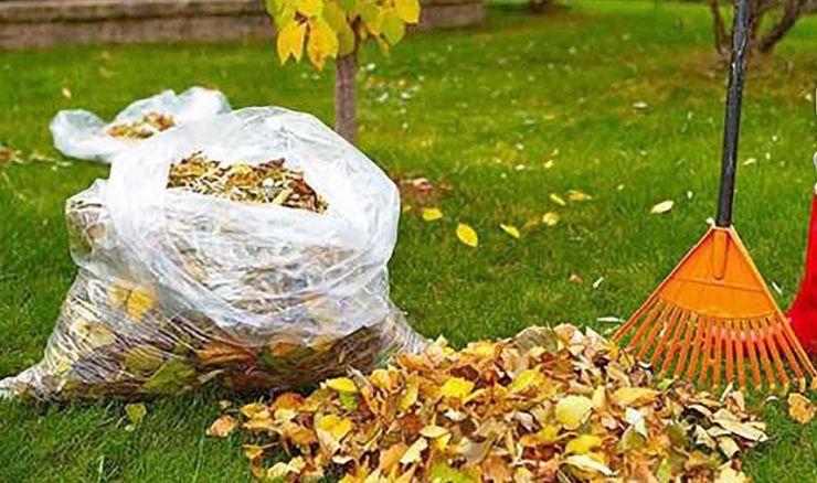 A început curățenia! De azi se ridică deșeurile abandonate de pe domeniul public