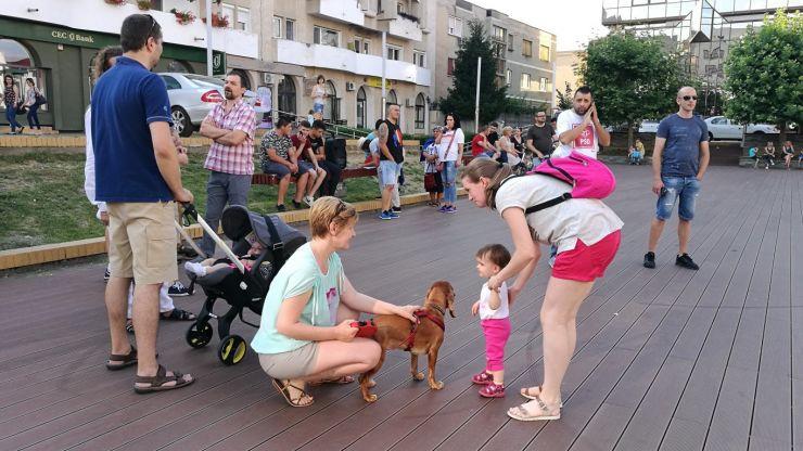 Protest în centrul Sătmarului. Protestatarii au cântat Imnul golanilor la bustul lui Corneliu Coposu