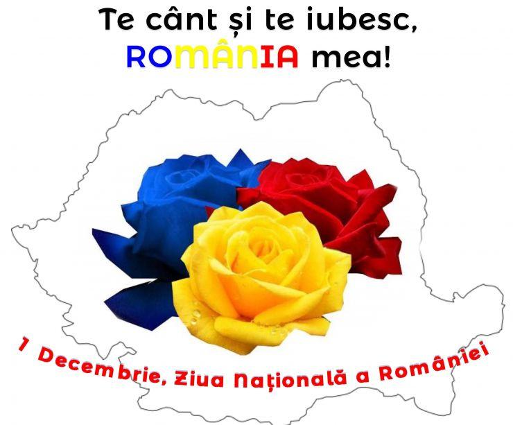 Ziua Națională a României, marcată la Biblioteca Județeană Satu Mare