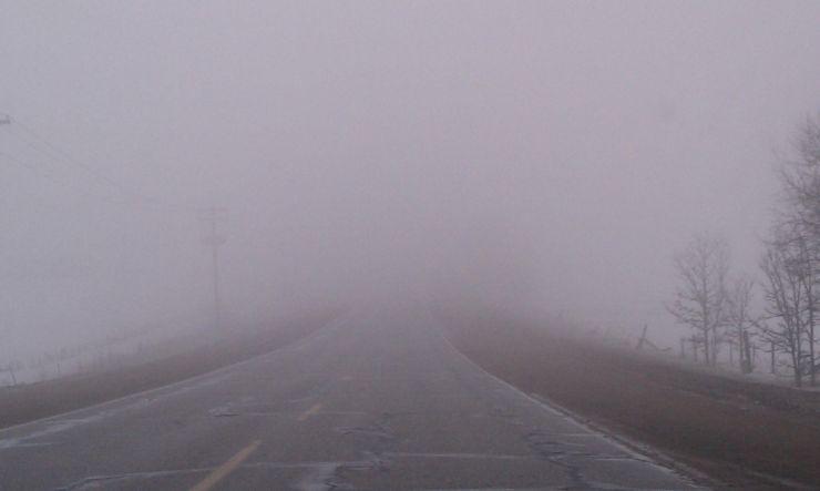 Avertizare meteo | Cod galben de ceață și chiciură la Satu Mare