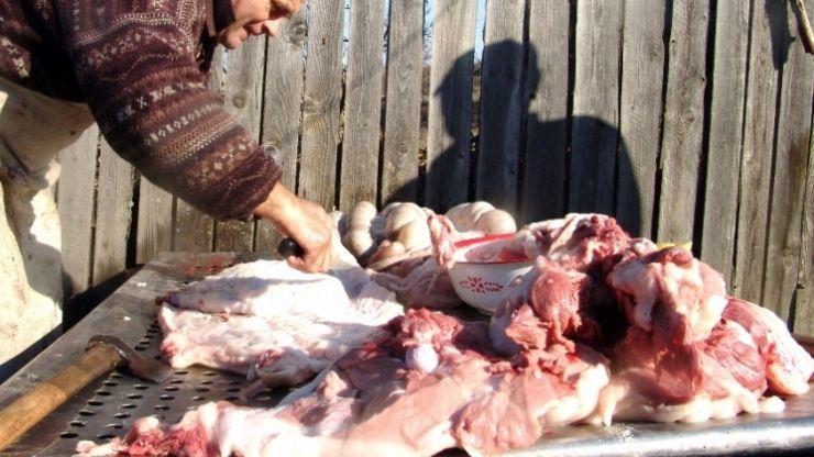 Focar de trichineloză în Batarci. Două familii au avut și vor avea nevoie de îngrijiri medicale de specialitate