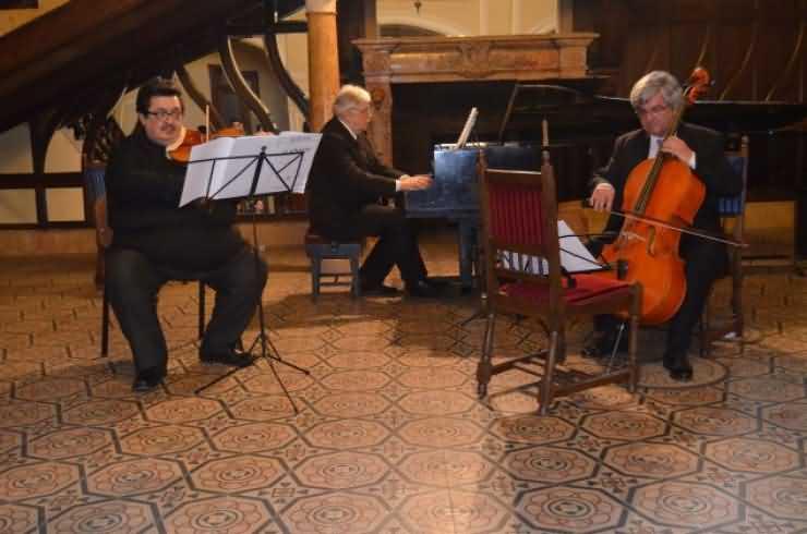 Concert cameral Beethoven la Carei