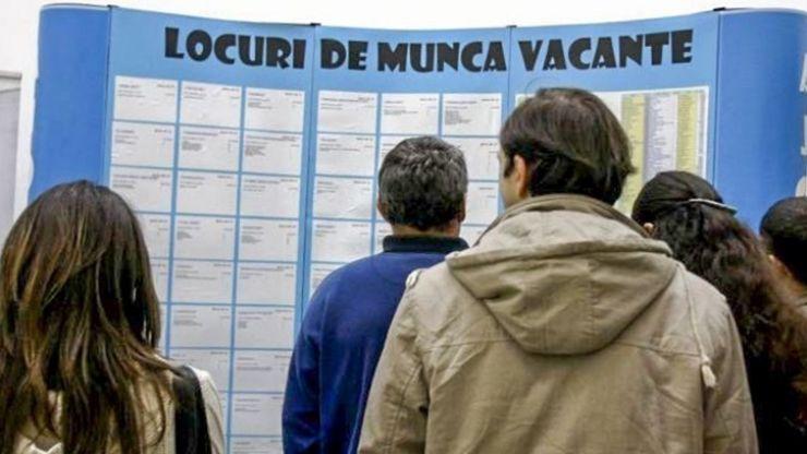 Peste 3.600 de persoane au fost încadrate pe piața muncii, în judeţul Satu Mare