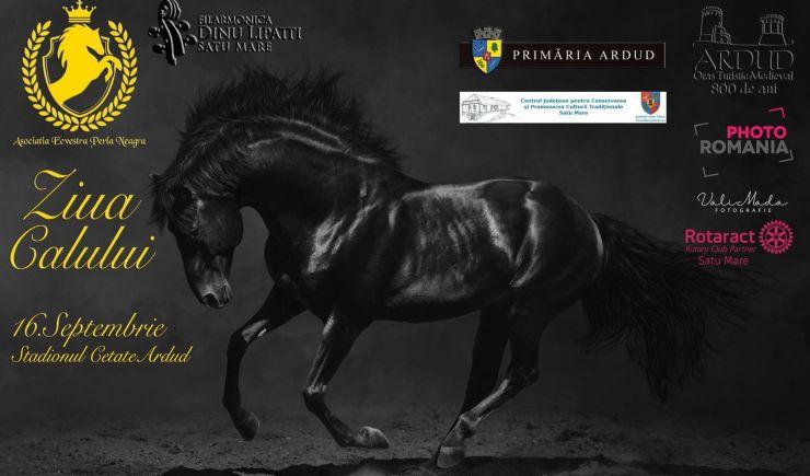 """""""Ziua Calului"""", sărbătorită la Ardud"""
