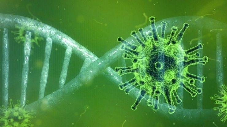 COVID-19 | Numărul îmbolnăvirilor cu noul coronavirus crește de la o zi la alta în județul Satu Mare